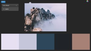 web design color schemes